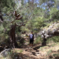 A-Day-Hike-on-The-Lycian-Way- route-to-Kabak